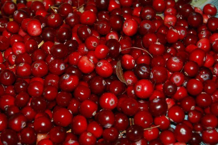 benefici mirtilli rossi